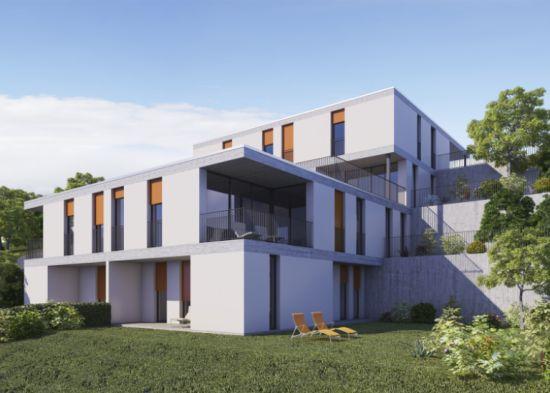 Coldrerio Multi Family Apartments