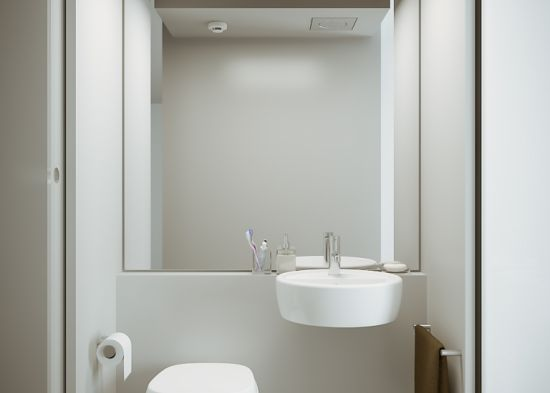 Extracting Bathroom Concept
