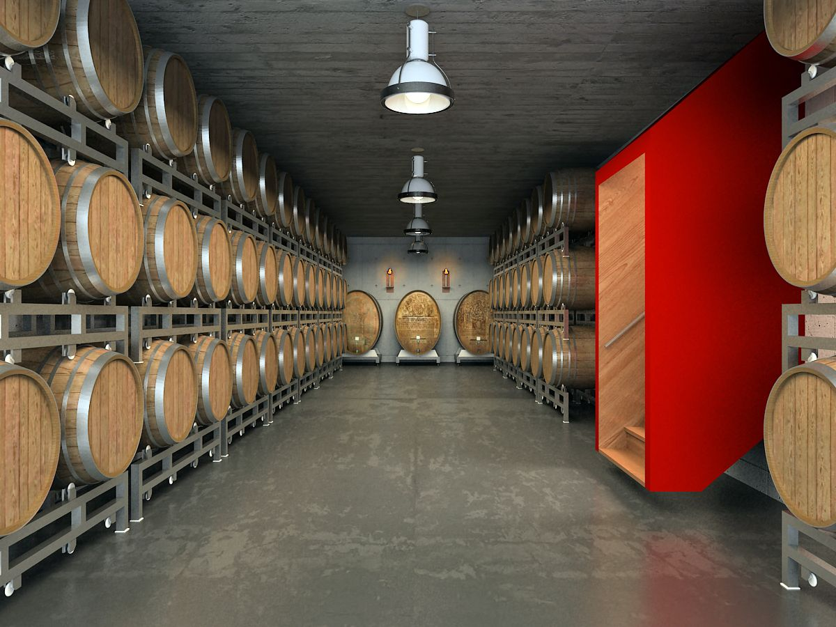 Wine Cellar and Store 717