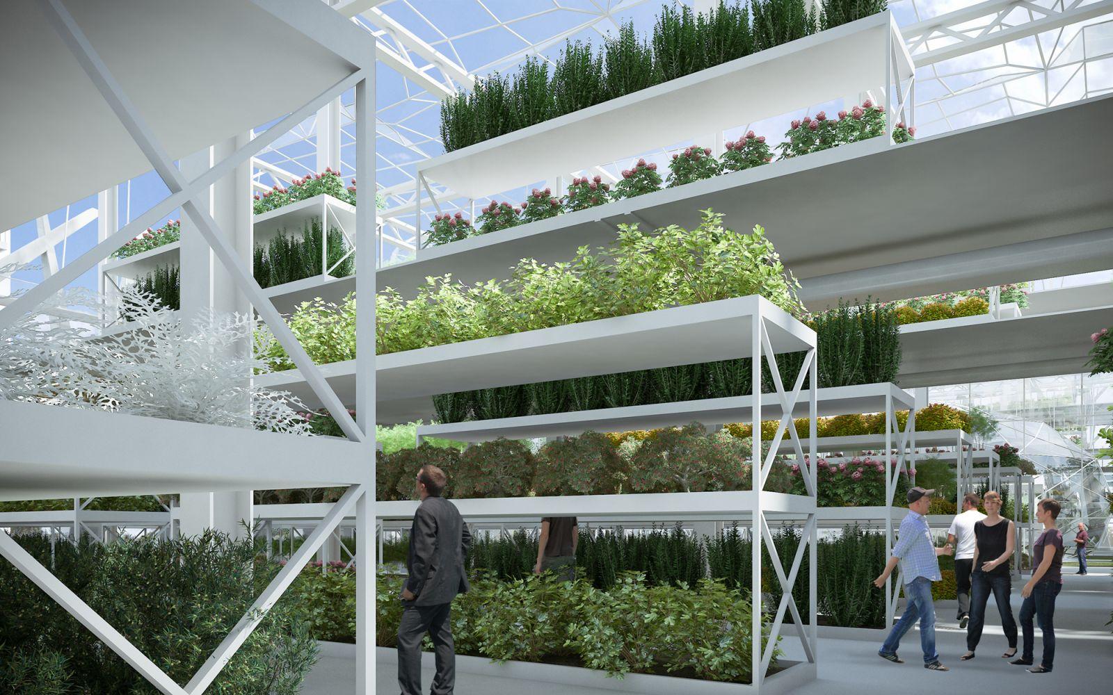 Green House Concept 487