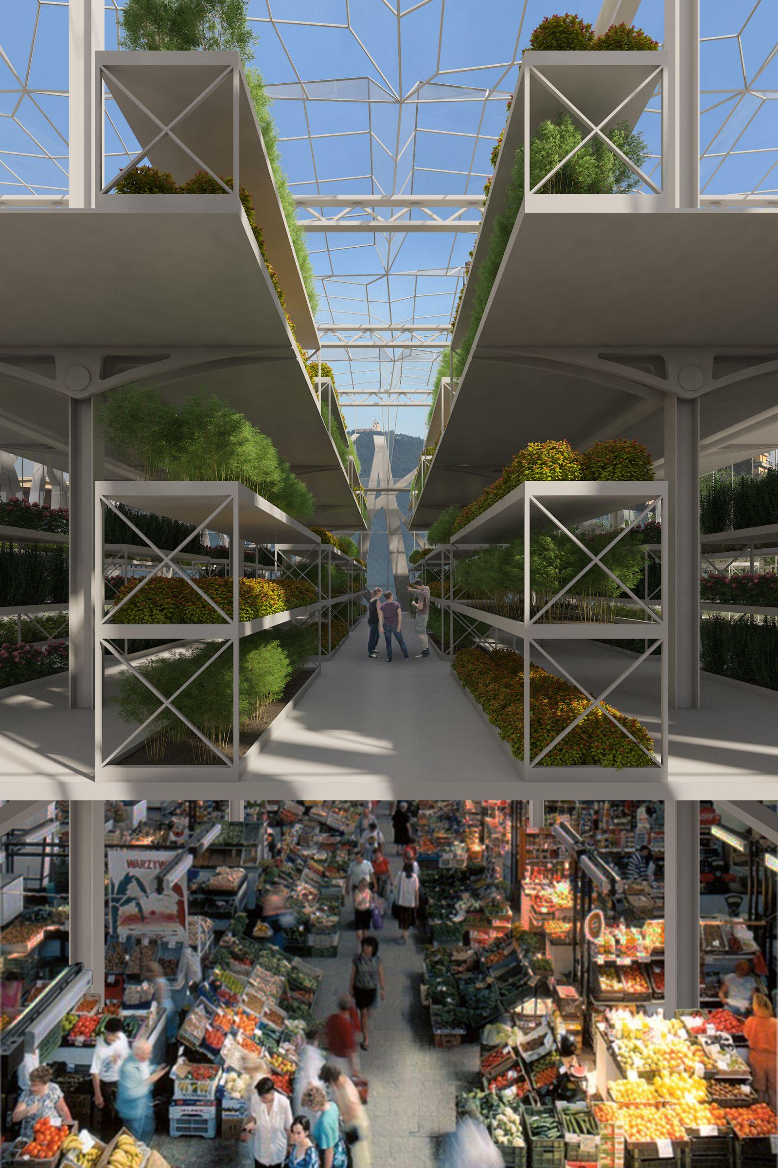 Green House Concept 489